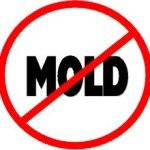 Moldimages